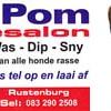 Pom Pom Hondesalon