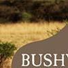 Bushwalker