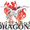 Dragons Indoor Sports