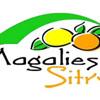 Magaliesberg Sitrusfees 30 Mei – 1 Junie 2014